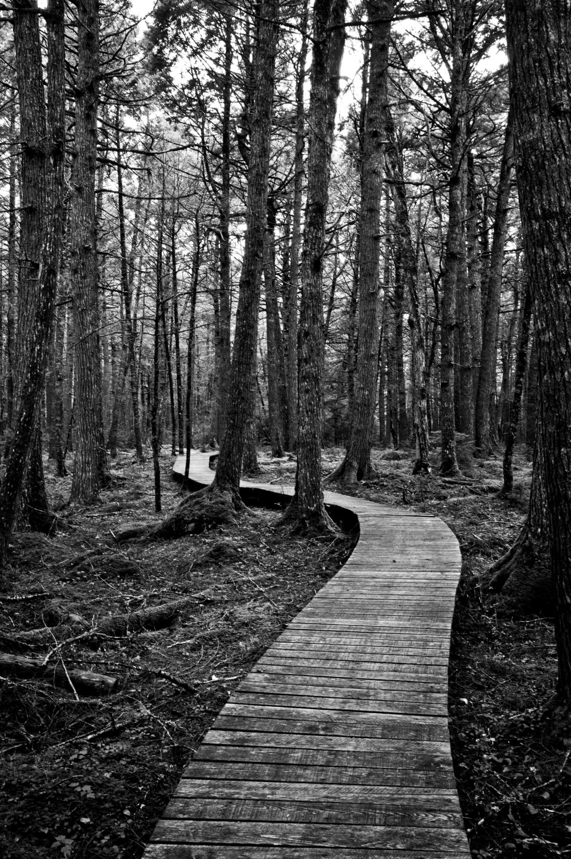 Path to Keji